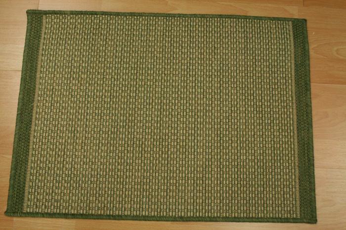 Foris FS01 Fern Indoor Outdoor Carpet Stair Runner