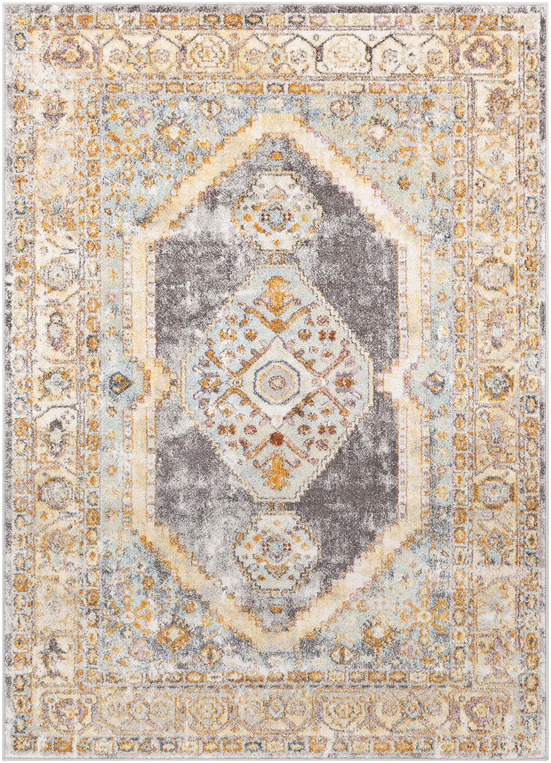 Surya New Mexico NWM-2307 Area Rug