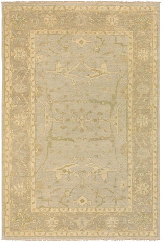 Ainsley AIN-1000 Cream Rug by Surya