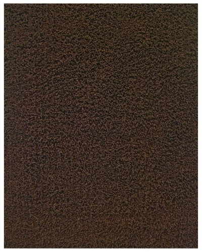 Bamboo Shag Coffee Bean Rug 100% Bamboo Anji Mountain