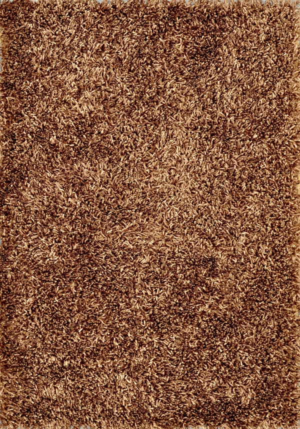 Carrera Shag CG-01 Brown Rug by Loloi