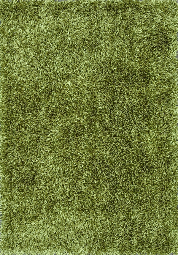 Carrera Shag CG-01 Green Rug by Loloi