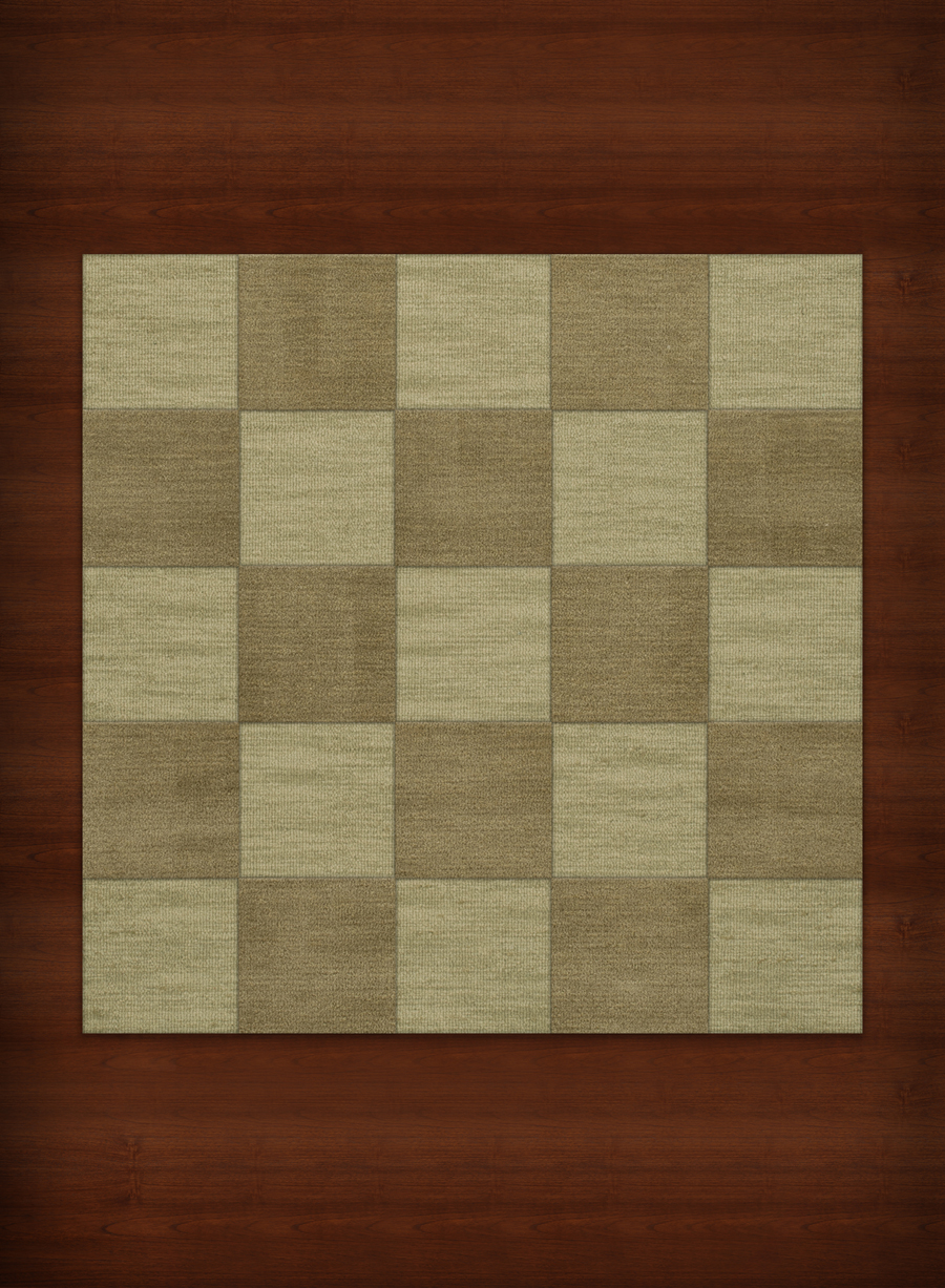 Payless Troy TR15 122 Marsh Square Rug