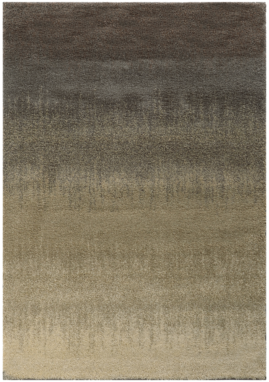Oriental Weavers Sphinx Covington 2j Area Rug
