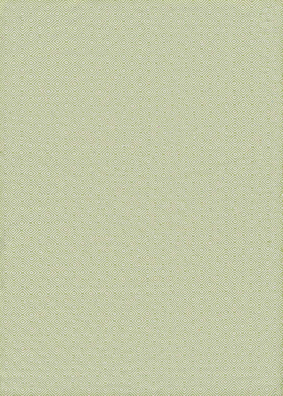 Couristan Cottages Manhasset 4961/0731 Green Rug