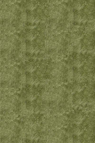 Momeni Luster Shag LS-01 Apple Green Rug