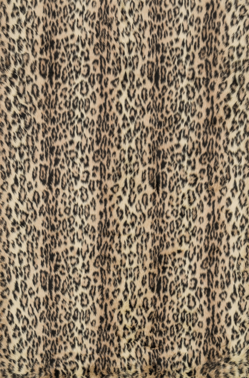 Danso DA-02 Cheetah Rug by Loloi