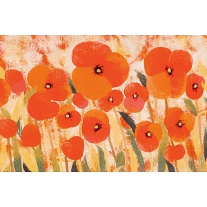 TransOcean Illusions 3283/24 Poppies Red Rug